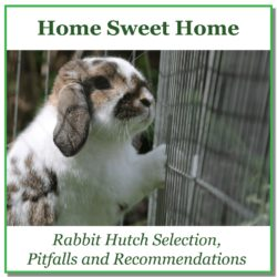 Rabbit Hutch Selection